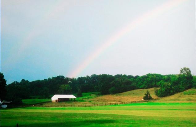 Double rainbow-10 bit